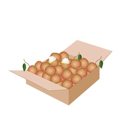 Fresh Ripe and Juicy Rambutans in A Shipping Box vector image vector image