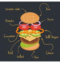 burger infographics vector image