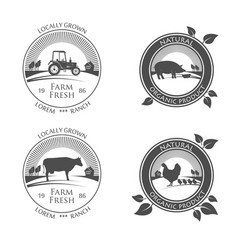 fresh farm produce icons logo with picture vector image