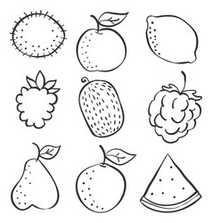 Fruit fresh doodles vector