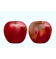 Good and spoiled red apple vector