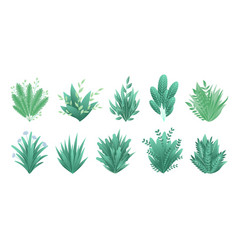 greenery branches green realistic spring grasss vector image