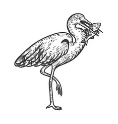 heron holds fish in its beak sketch vector image