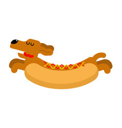 hot dog dachshund pet animal hotdog vector image
