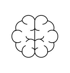 Line brain human anatomy organ of inteligence vector