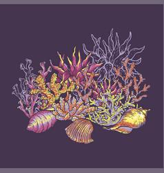 sea life natural greeting card underwater vector image
