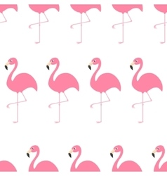 Seamless Pattern Flamingo Exotic tropical bird vector image