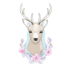 Watercolor isolated deer big antlers flowers and vector