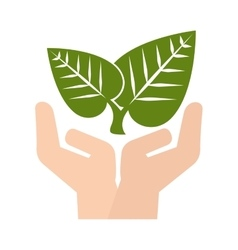 hand plant leaves vector image