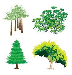 An Isometric Collection of Green Trees and Plants vector image vector image