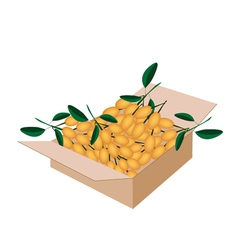 Fresh Juicy Burmese Grape in A Shipping Box vector image