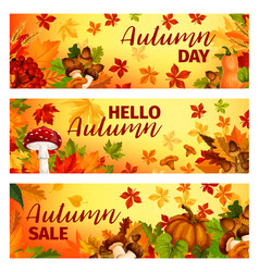 hello autumn banner with fall leaf frame border vector image vector image