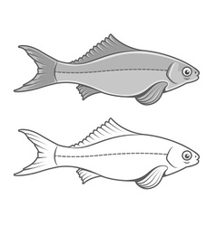 Silhouette of fish contour vector image vector image