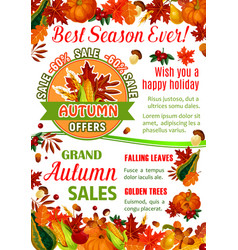 Autumn sale banner of fall season nature template vector