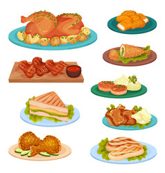Collection of tasty poultry dishes fried chicken vector