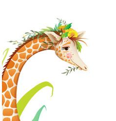 Cute giraffe detailed face portrait in nature vector