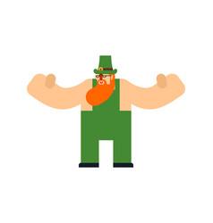 Leprechaun isolated st patricks day character vector