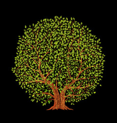old tree on black background vector image