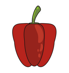 Pepper vegetable food fresh vector
