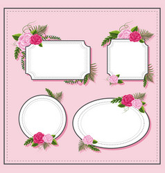 different frame design with pink roses vector image