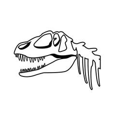 Fossil dinosaur head skeleton lizard animal bone vector
