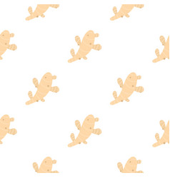 Fresh ginger pattern flat vector