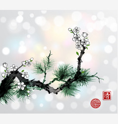 Green pine tree branch and white sakura cherry vector