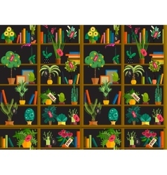 indoor potted plants on shelves set isolated flat vector image
