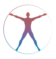 modern colorful vitruvian man vector image