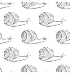 Snail black and white colors invertebrates vector