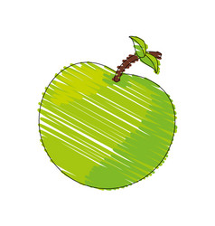 drawing green apple food image vector image
