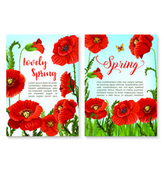 springtime holidays poster with poppy flower vector image vector image