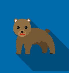 bear icon flat singe animal icon from the big vector image vector image