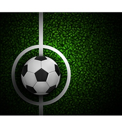 Field Soccer vector image vector image