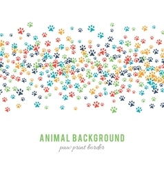 Colorful dog paw prints background isolated on vector image vector image
