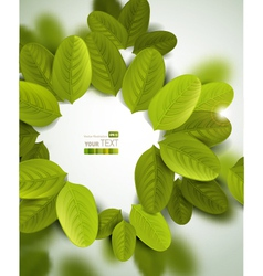 Leaves document template vector image vector image