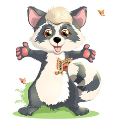 Beautiful raccoon vector