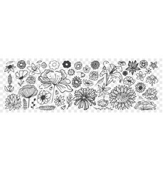 hand drawn flowers doodle set vector image