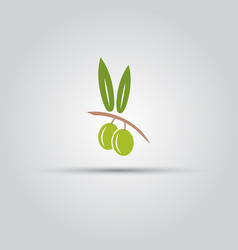 olive isolated colored icon vector image