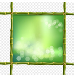 Square green bamboo stems border frame with bokeh vector