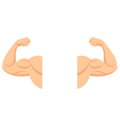 strong arms with contracted biceps vector image