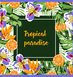 tropical card pattern vector image