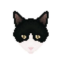 cat head pixel art pet animal vector image