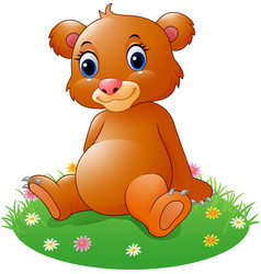 cartoon baby brown bear sitting vector image