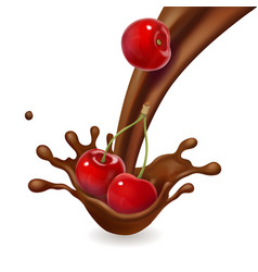 cherry fruit in melted chocolate splash isolated vector image