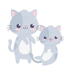 Cute little cats domestic pets kawaii cartoon vector