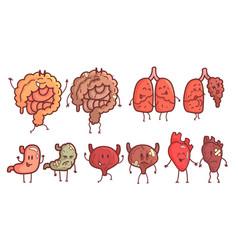healthy and unhealthy human internal organs vector image
