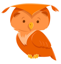 owl bird cute animal cartoon character vector image