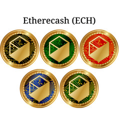 Set of physical golden coin etherecash ech vector