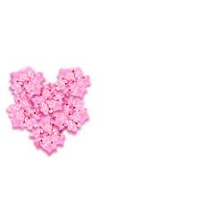 st valentine s day decorative sakura flowers a vector image